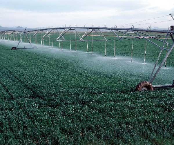 کشاورزی در اصفهان
