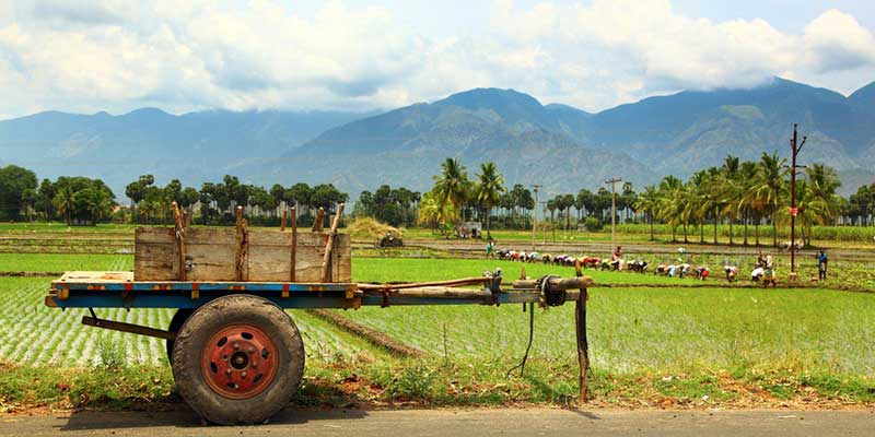 تکنولوژی کشاورزی